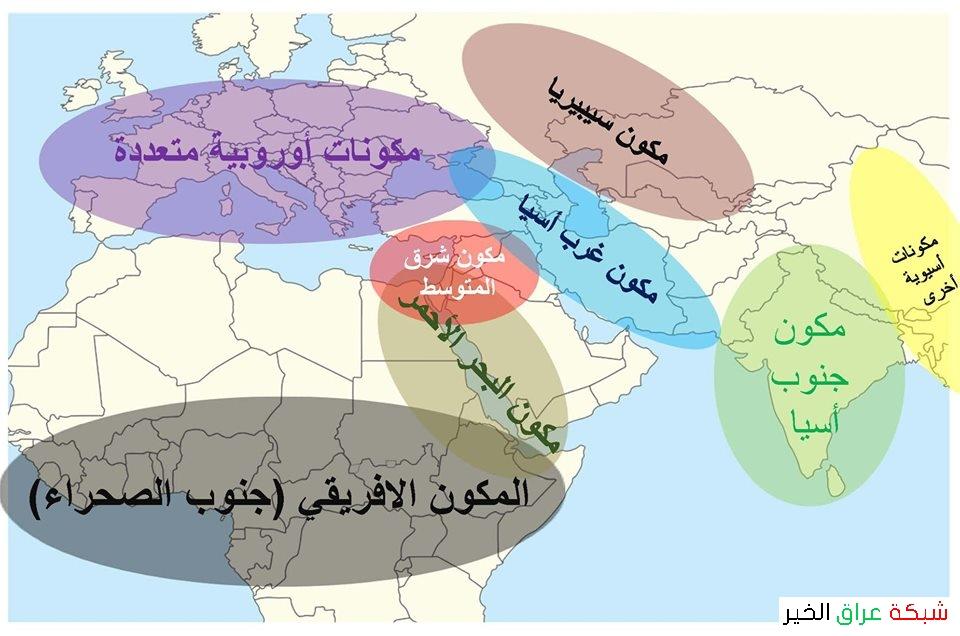نتائج العراق الجينية: