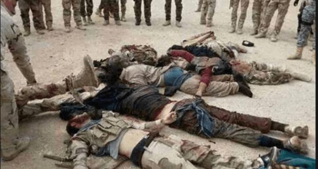 داعش في جبة في الانبار