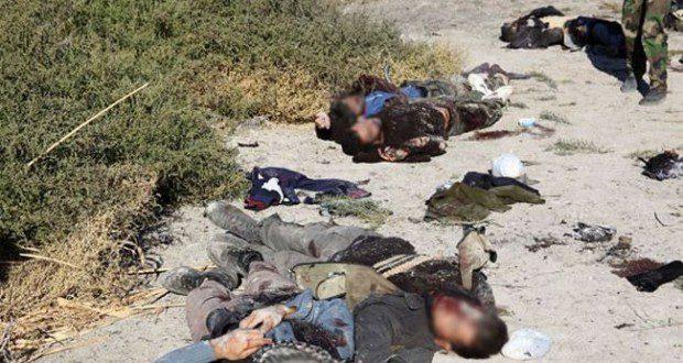 صورة ارشيفية - قتلى المسلحين التكفيريين في سوريا