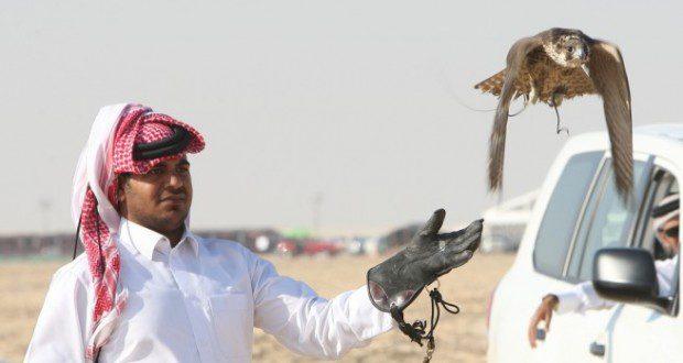 qatar 655x360 1