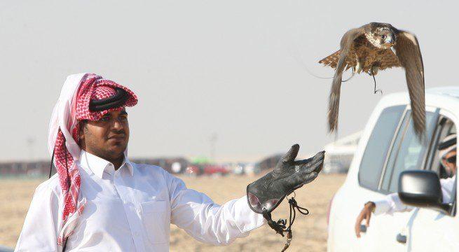 qatar-655x360