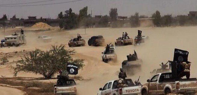 داعش-في-امرلي-655x316