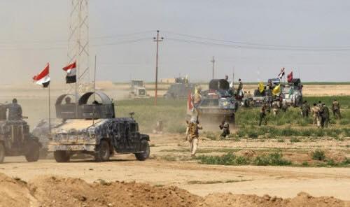 الحصيلة النهائية لقتلى داعش خلال عمليات تحرير جزيرة الخالدية