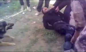 عراقيون يحاولون إطعام زميلهم لكلب متوحش
