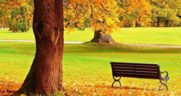 الربيع والخريف
