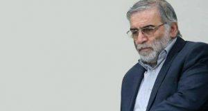 محسن فخري زادة